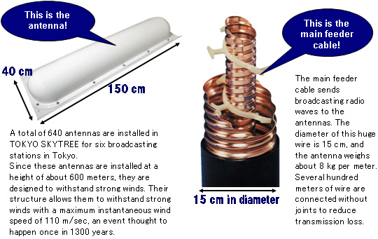 Antenna system for terrestrial digital broadcasting